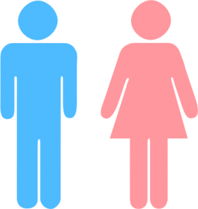 Siamo uomini o donne Silvana De Mari Community